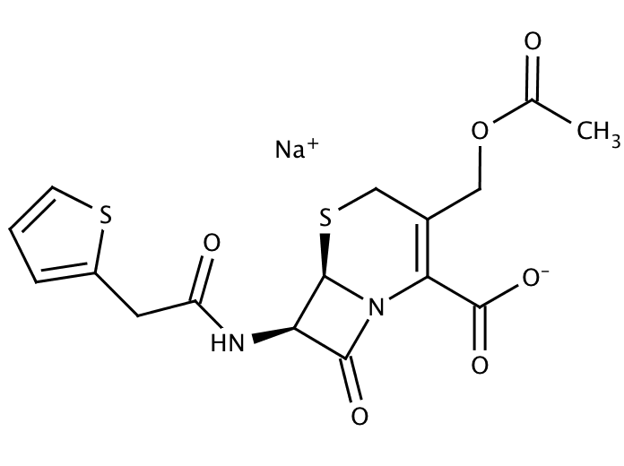 Cephalothin Sodium Salt